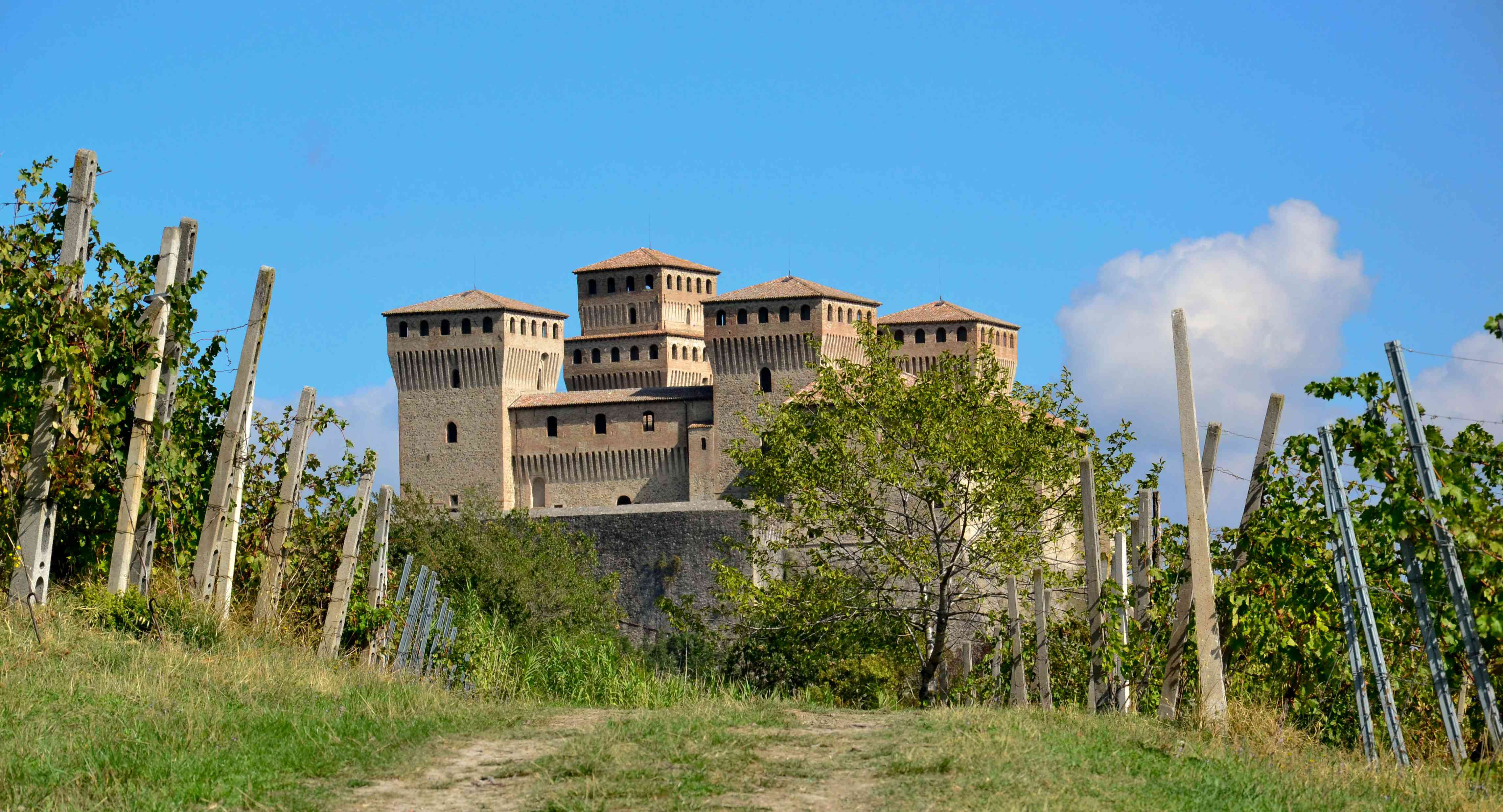 vigna_castello_4